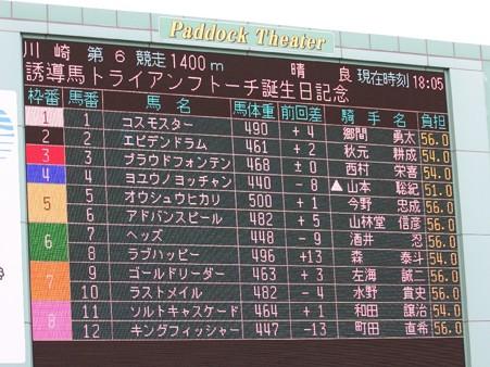 川崎競馬の誘導馬05月開催 誕生日記念レースVer-01