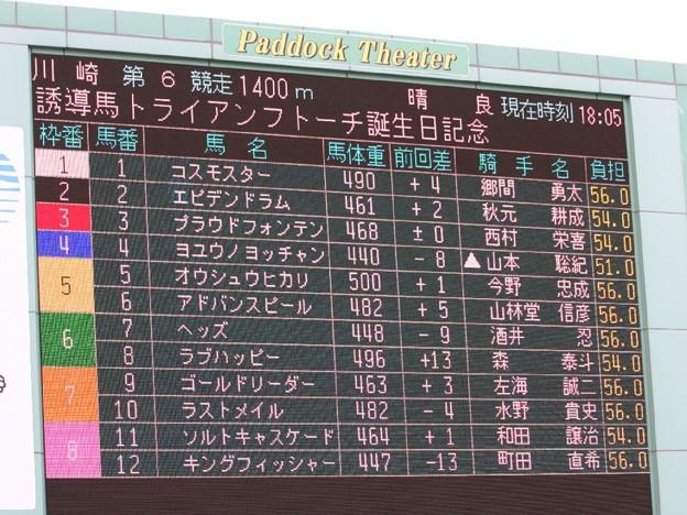 写真: 川崎競馬の誘導馬05月開催 誕生日記念レースVer-01-large