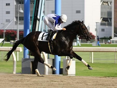 10728川崎3R2歳新馬4イ優勝ラムジュレップ