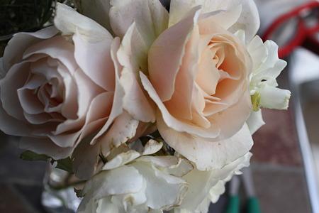 バラの花束 (1)