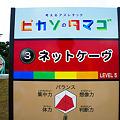 Photos: ぐりんぱ -Grinpa-:ピカソのタマゴ:ネットケーヴ