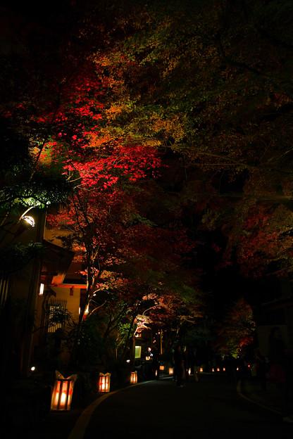 写真: 『秋の道標。。。』~京都 貴船神社~