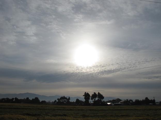 Photos: 秋の雲。朝日。