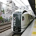 写真: 成田エクスプレス E259系