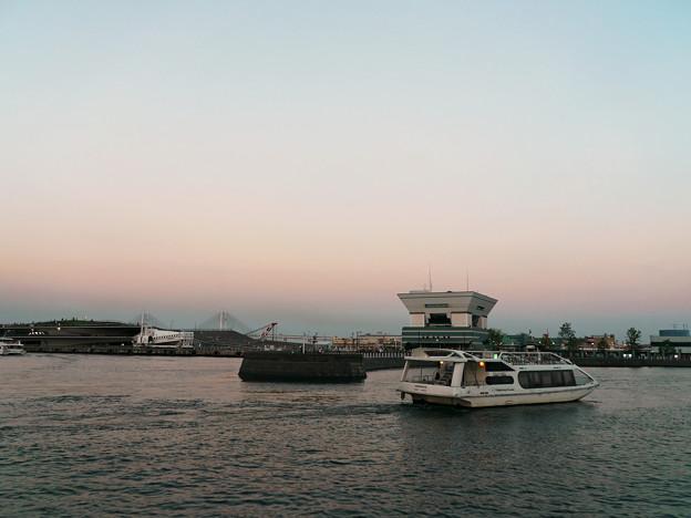 大桟橋全景。