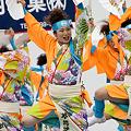 写真: 夢想漣えさし_38 - かみす舞っちゃげ祭り2011