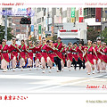 Summer Zipper_22 - 第12回 東京よさこい 2011