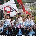 朝霞鳴子一族め組 - 第8回 浦和よさこい 2011