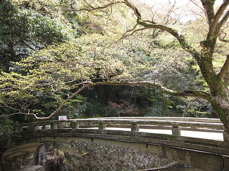 箕面滝(みのおのたき)