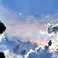 Photos: 天空の真珠貝