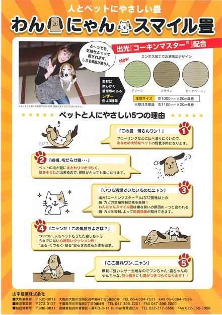写真: ペット用畳表1