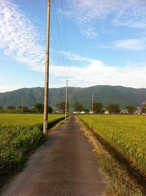 Photos: 牛池からの道