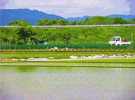 軽トラのある風景 ~畑に水やり~