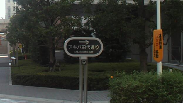 Photos: 秋葉原なう