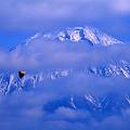 写真: 風に乗って