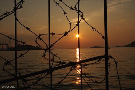有刺鉄線と夕景