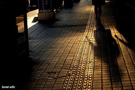 点字ブロックに夏の影