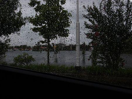 台風の中のお出かけ2