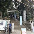 Photos: yoyohachi110206012