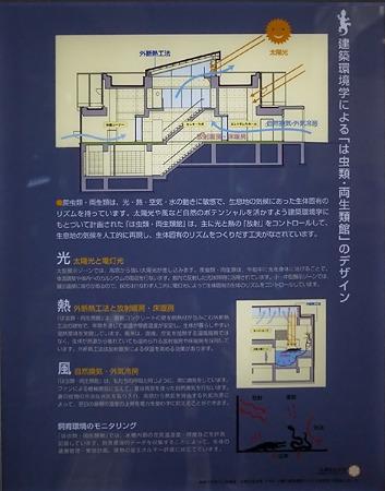 mauyama110705043
