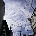 Photos: 2009-09-01の空1