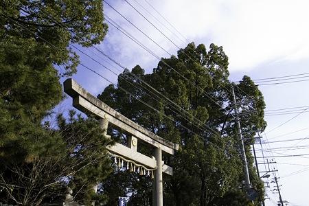 2011-02-02の空