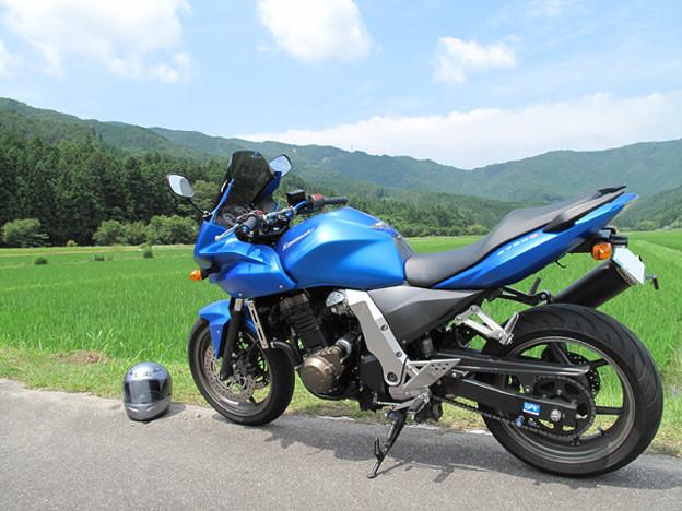 写真: 青い空、緑の田
