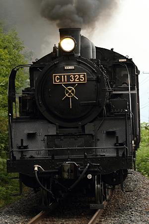 C11 325