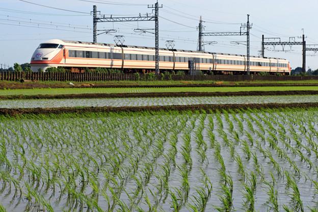 1128列車