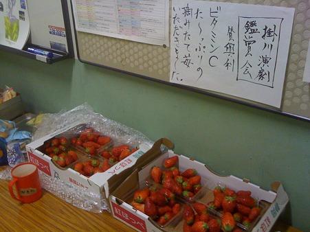 甘くて美味しいイチゴがたくさん