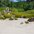 Photos: 明月院庭園