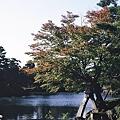 Photos: 朝の兼六園