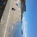 写真: 昨日の寺部海岸。 まだ家族...