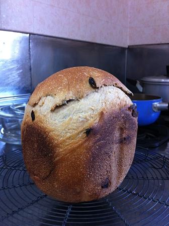 パンが焼けました。2
