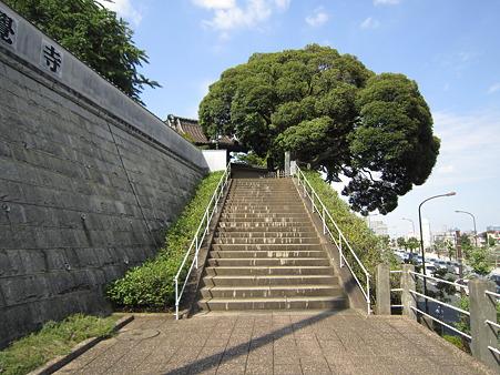 本覚寺の階段