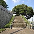 Photos: 本覚寺の階段