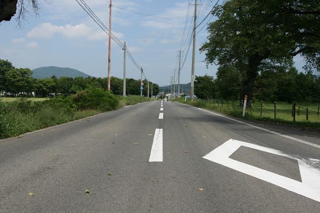 Photos: 縄文の道?