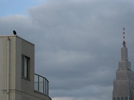 一匹のカラスとドコモタワー