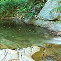 写真: The Great Brook