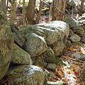 Photos: Old Stone Walls