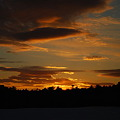 Photos: The Orange Light