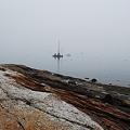 In the Fog 5-20-11