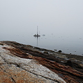 Photos: In the Fog 5-20-11