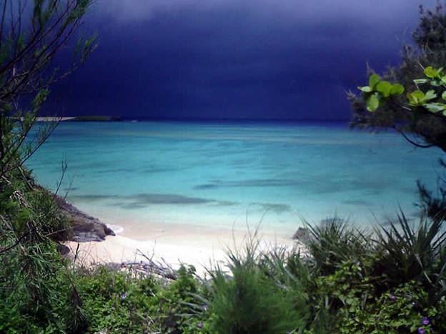 沖縄奇跡のひとときF1000121a800