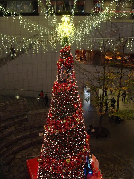 Christmastree002