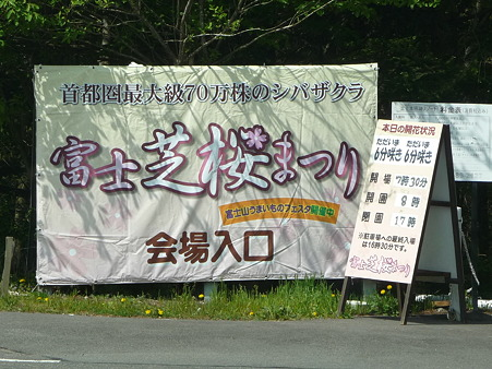 100518-富士芝桜まつり-10