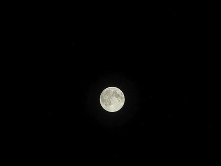 100824-お月さん (3)