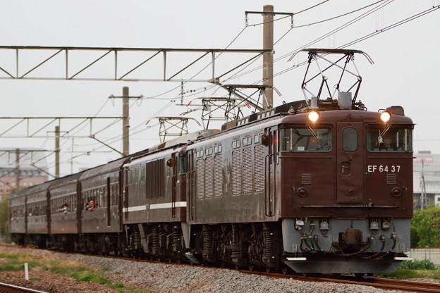 9736レ EF64 37+EF64 1001+旧型客車 4両
