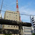 Photos: 境内から見える東京タワー-熊野神社 (港区麻布台)