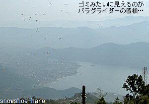 フェワ湖とパラグライダー群